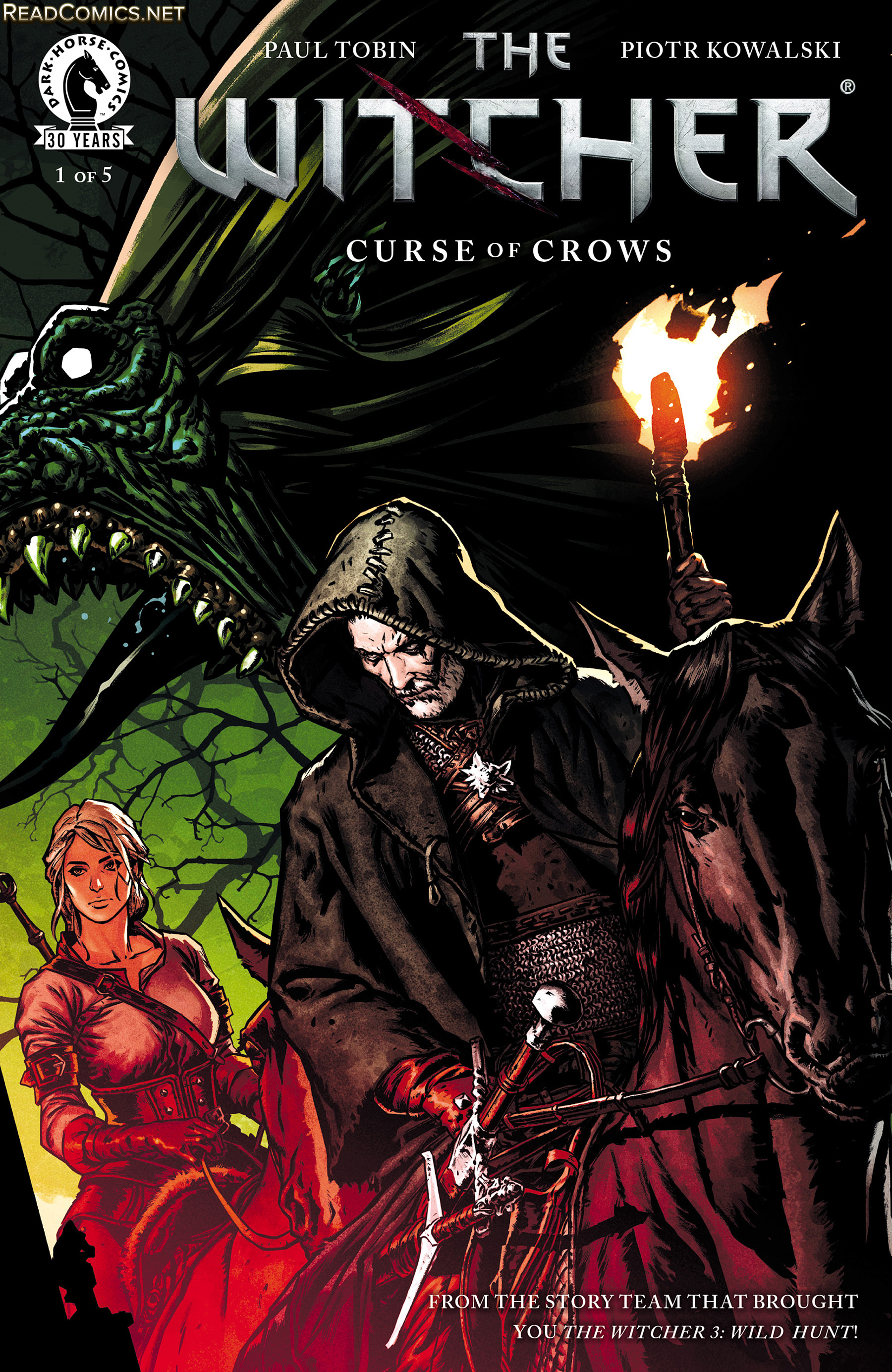 The witcher curse of the crows made by dark horse comics